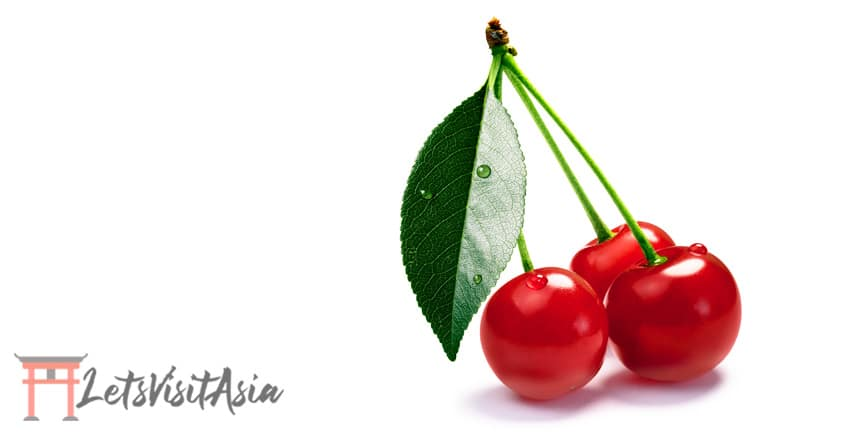 Montmorency tart cherry as the natural alternative to melatonin for travel to asia